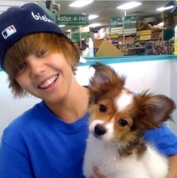 justin bieber dog sammy dead images 2014