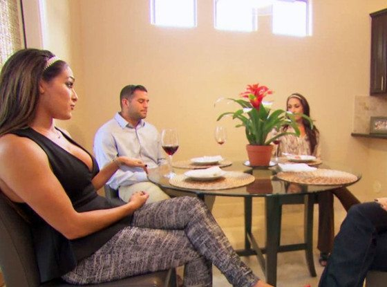 bella twins talking family on total divas images