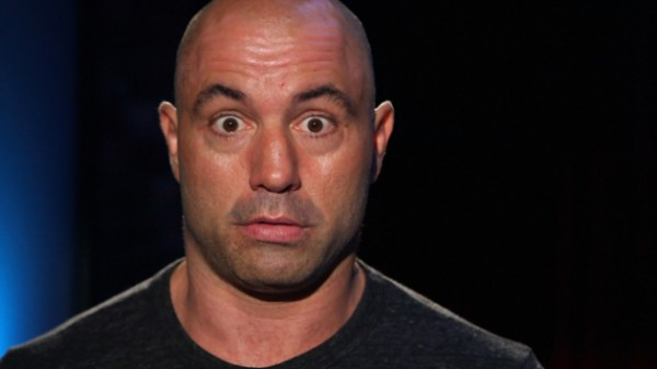 joe rogans top best ufc mma quotes