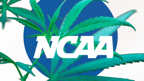 ncaa need to revisit its marijuana policy 2015