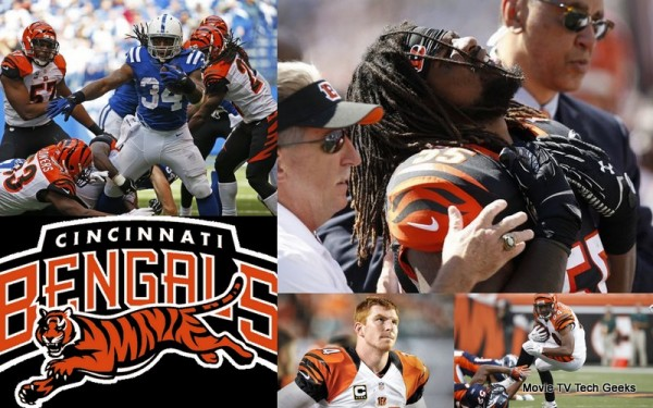 NFL Season Recap and 2015 NFL Draft Needs Cincinnati Bengals