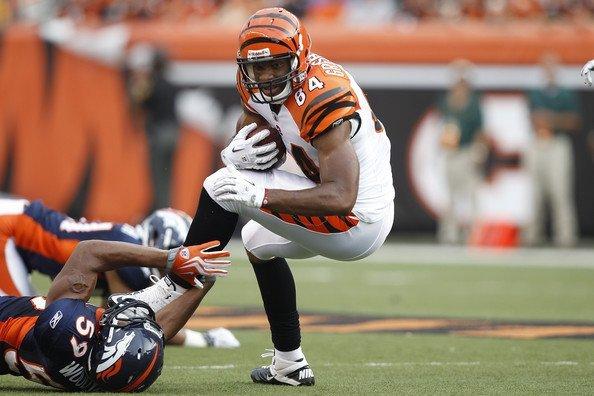 bengals jermaine gresham tight end for andy dalton 2015 images