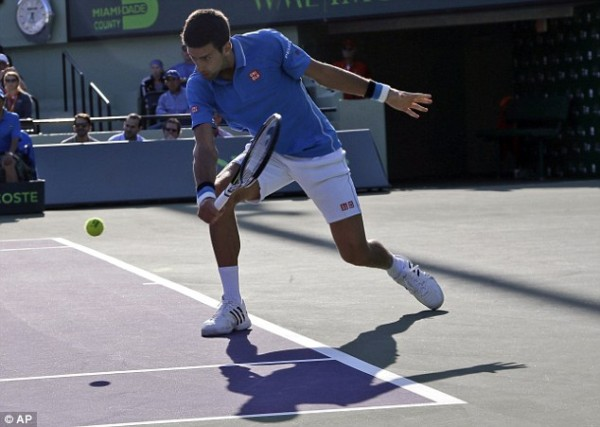 novak djokovic returning steve darcis balls for 2015 miami open masters
