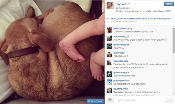 haylie duff baby 2015 gossip
