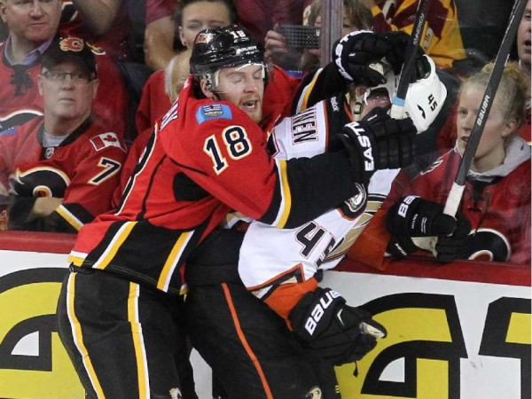 matt stajan calgary goes after ducks man bulge stanley cup playoffs 2015