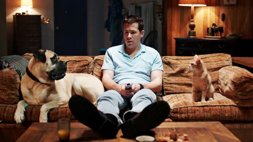 Ryan Reynolds Movie With A Dog And Cat