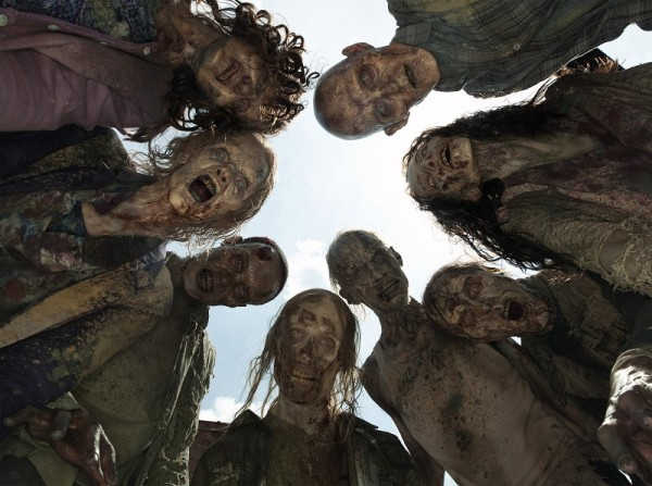 the walking dead season 5 box set almost here images 2015