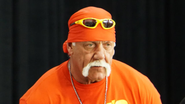 hulk hogan wiped from wwe 2015 gossip