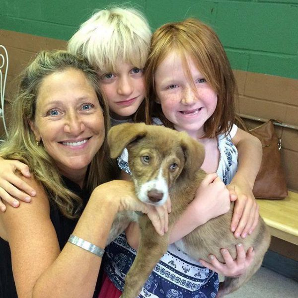 Edie Falco get your rescue on north shore animal league 2015