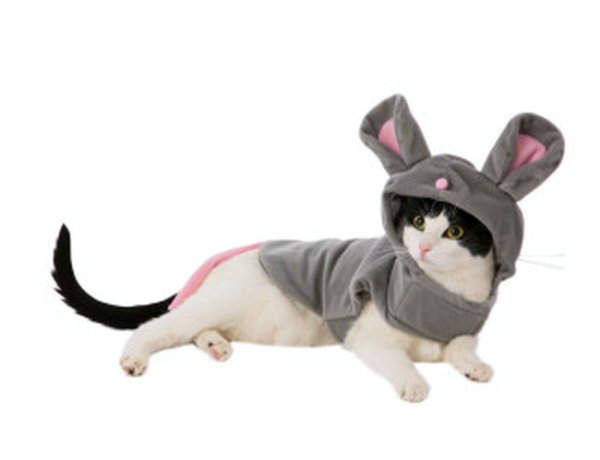 cat mouse pet costume