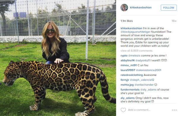 khloe kardashian with lion 2015 kuwtk images