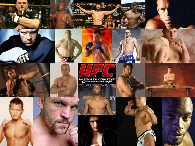 2014 baddest best ufc fighers collage