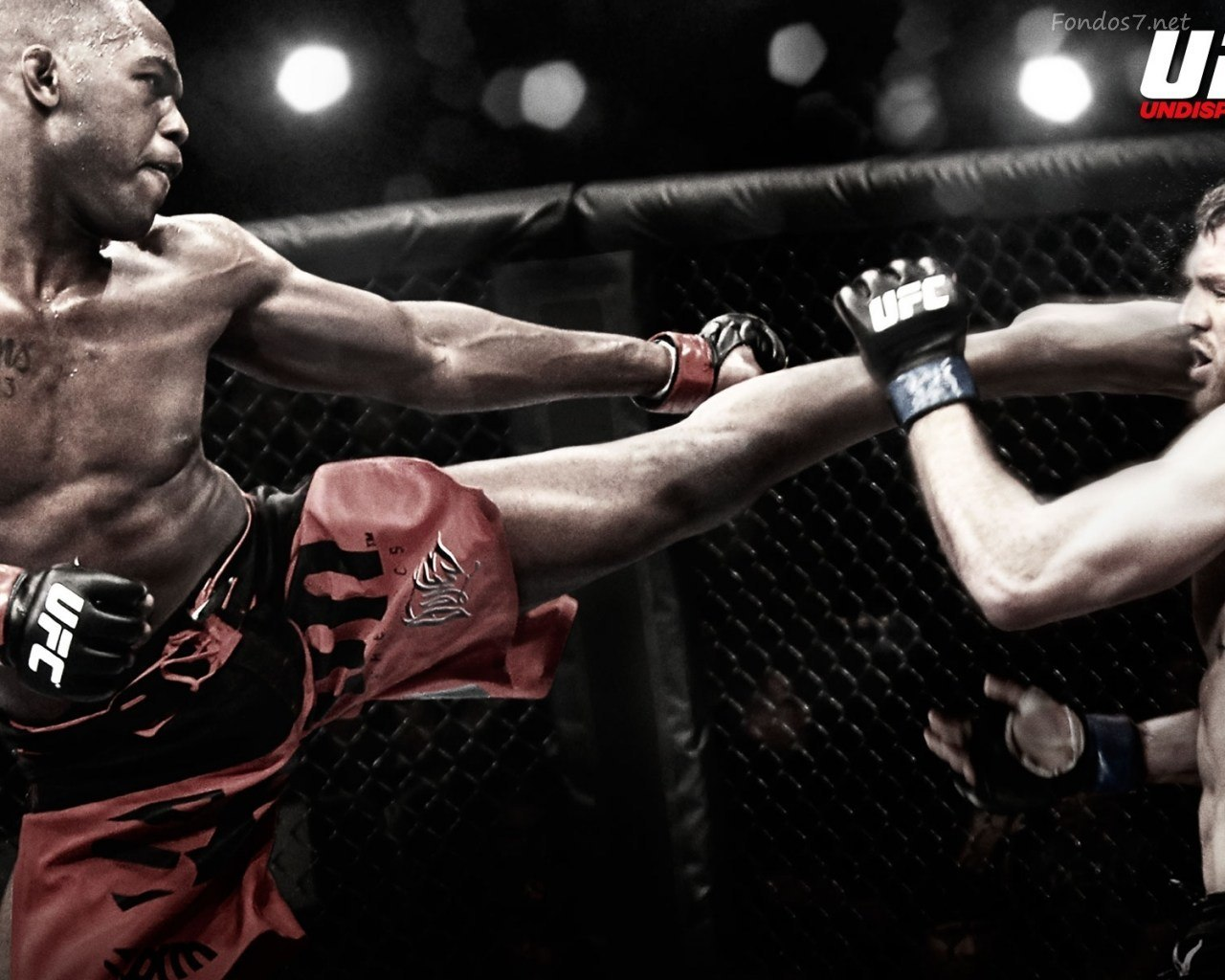 jon jones kick punch top ufc fighter 2014 images