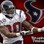 Andre Johnson & Houston Texans Future