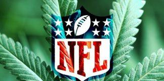 marijuana laws in the nfl 2015 season images
