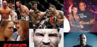 2014 ufc mma fight images
