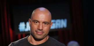 joe rogan best ufc ambassador dana white images