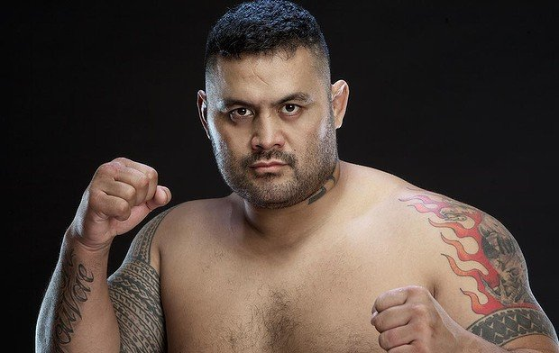 mark hunt most underrated ufc fighters 2015