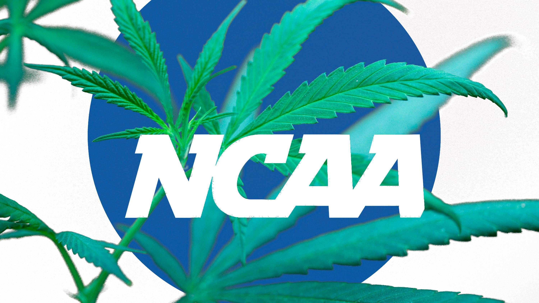 mitch mcgary balls for ncaa marijuana policy 2015