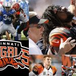 NFL Season Recap & 2015 NFL Draft Needs: Cincinnati Bengals