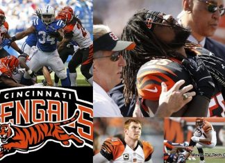 NFL Season Recap and 2015 NFL Draft Needs Cincinnati Bengals
