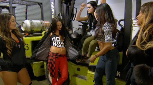 brie defends brie mode from paige on total divas 2015 images