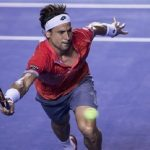 david ferrer running for ryan harrison balls atp acapulco open 2015