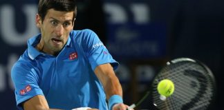 2015 david cup predictions for novak djokovic images