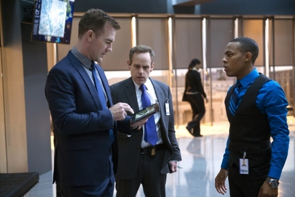 csi cyber shad moss bulge for zotgo 2015