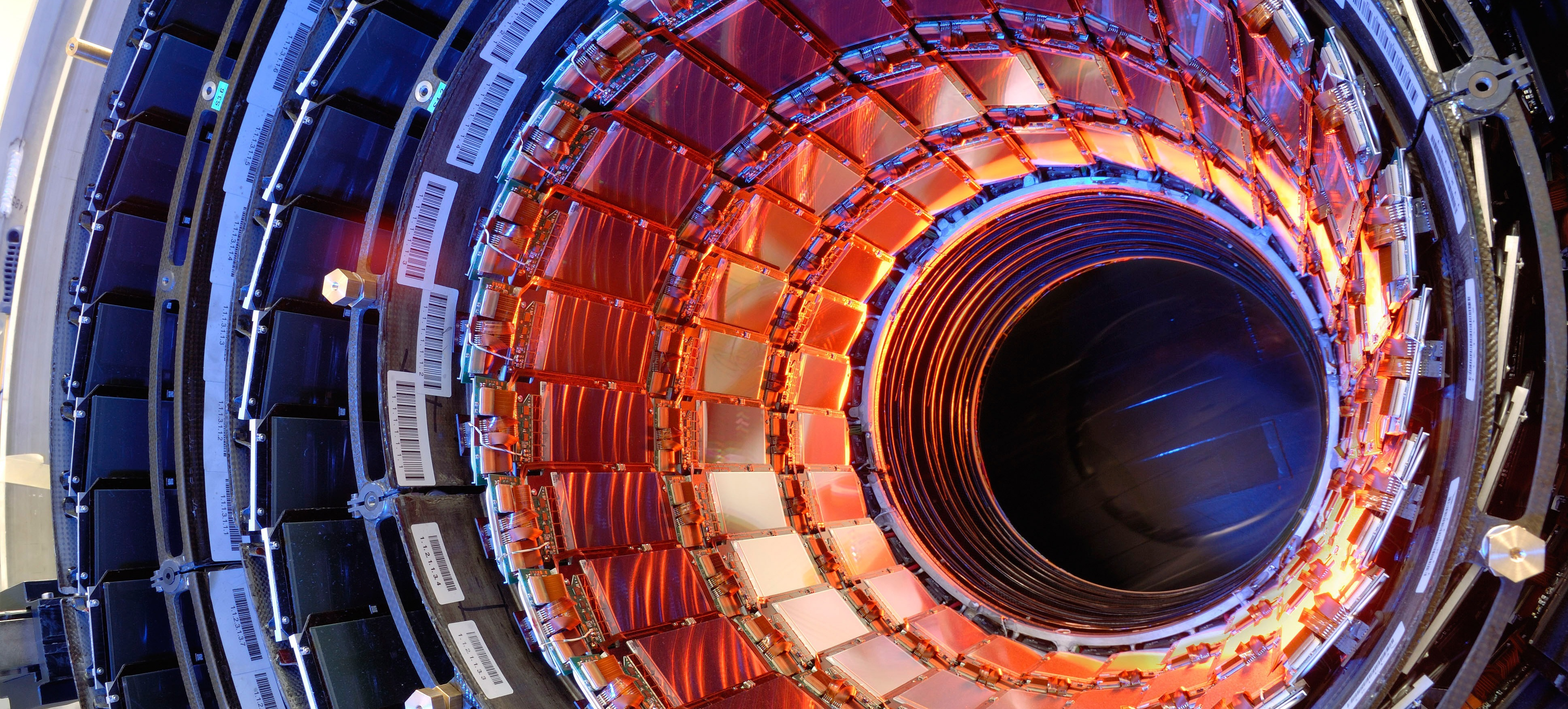 large hadron collider back in business
