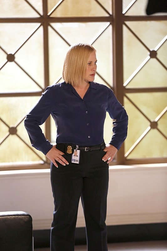 csi cyber crowd sourced patricia arquette bomber recap images 2015