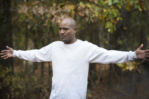 celebrity drug arrest seth gilliam walking dead
