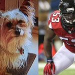 Atlanta Falcons Prince Shembo Waived For His Dog Day Afternoon