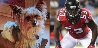 prince shembo waived by falcons for dog dying