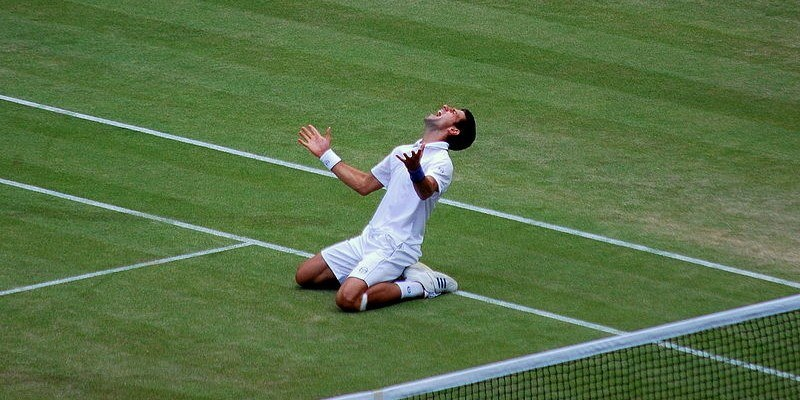 novak djokovic tops wimbledon betting odds 2015 images