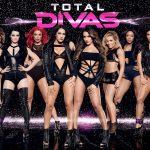 total divas divide season 4 2015