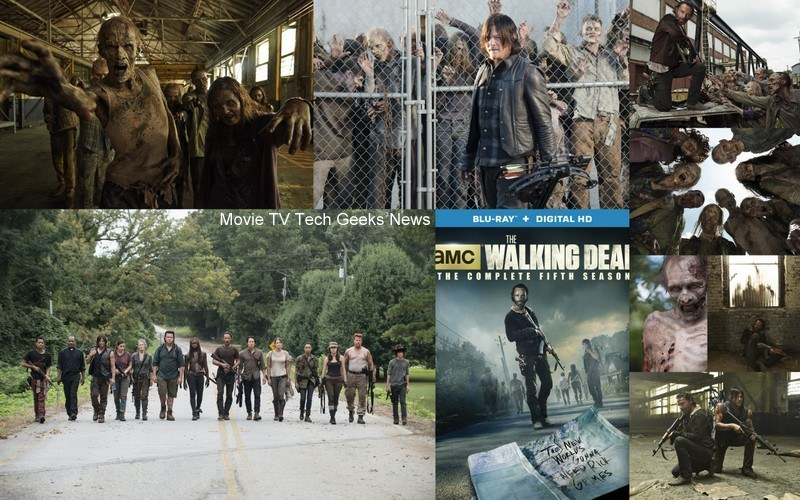 walking dead season 5 blu ray box set 2015 images