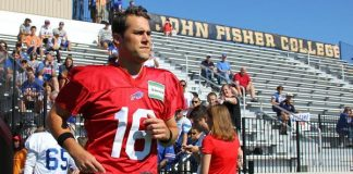 buffalo bills matt cassel nfl 2015 images