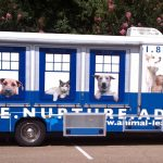 About North Shore Animal League America