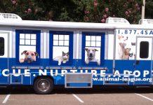 about north shore animal league pet mobile 2015 images
