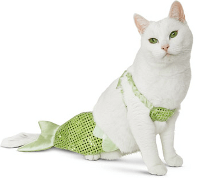 mermaid cat costume