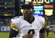 michael vick to the rescue for pittsburgh steelers 2015 nfl