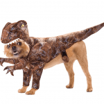 raptor pet costume halloween