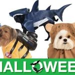 Most Adorable Pet Costumes for Halloween
