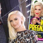 blake shelton shoots down pregnancy rumors 2015 gossip