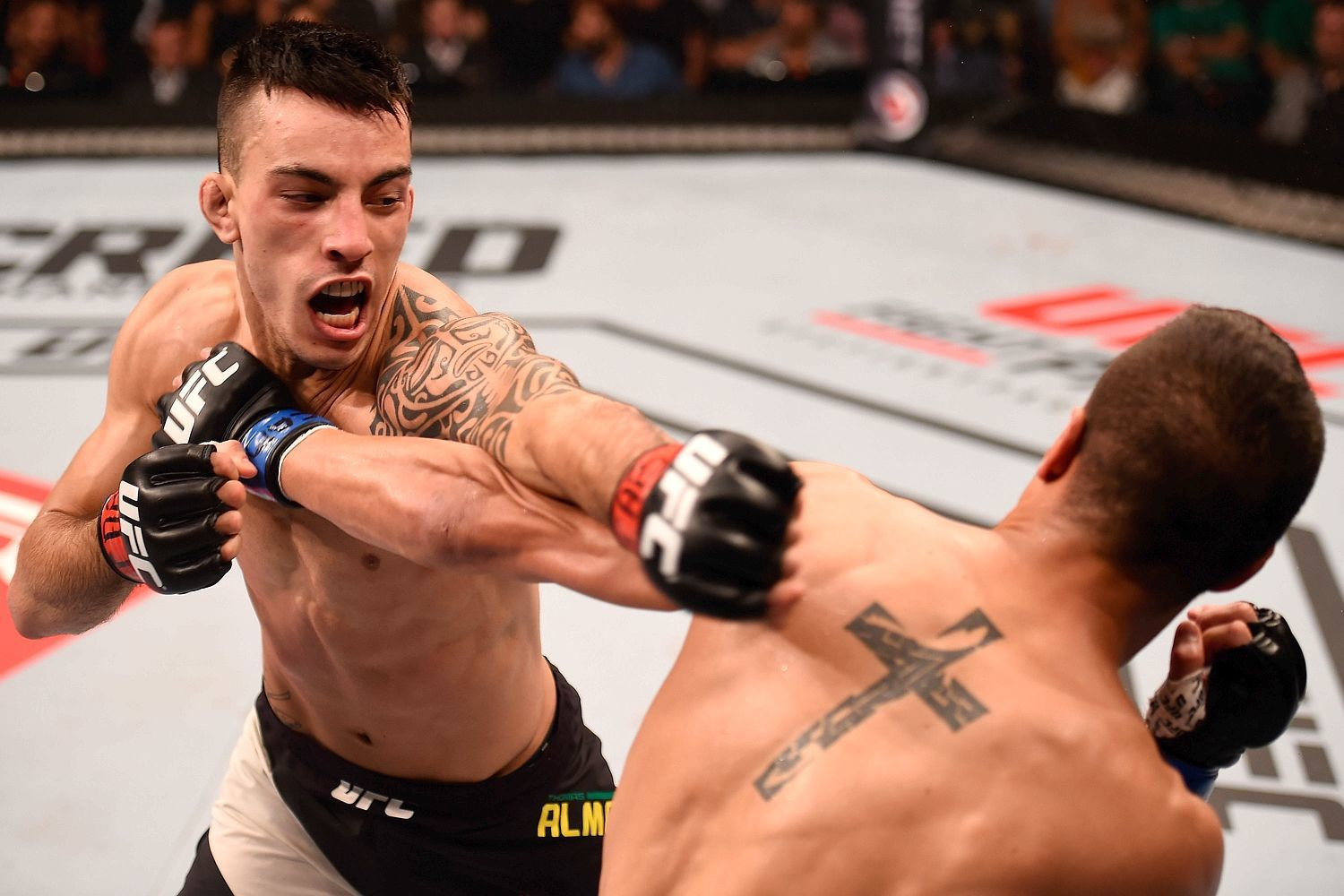 has the ufc reputation gotten better in 2015 mma images