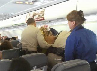 spirit airlines racist 2015 gossip