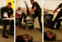 the elephant in that south carolina classroom 2015 opinion