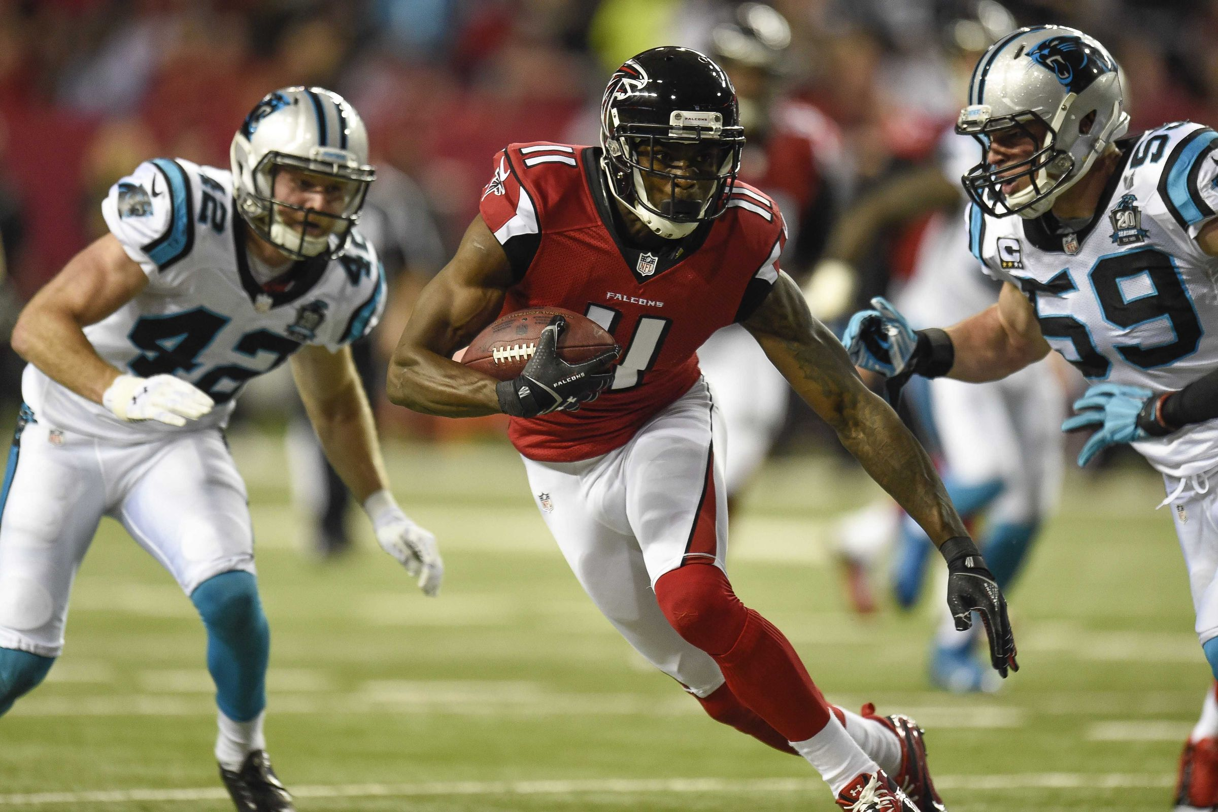 Atlanta Falcons Wreck Panthers Perfect Season 2015 images nfl