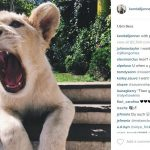 rescued lion with kylie jenner 2015 images